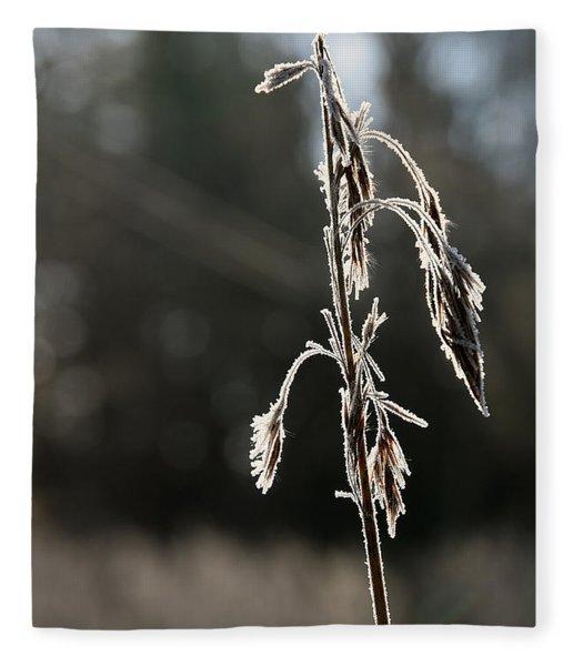 Straw In Backlight Fleece Blanket