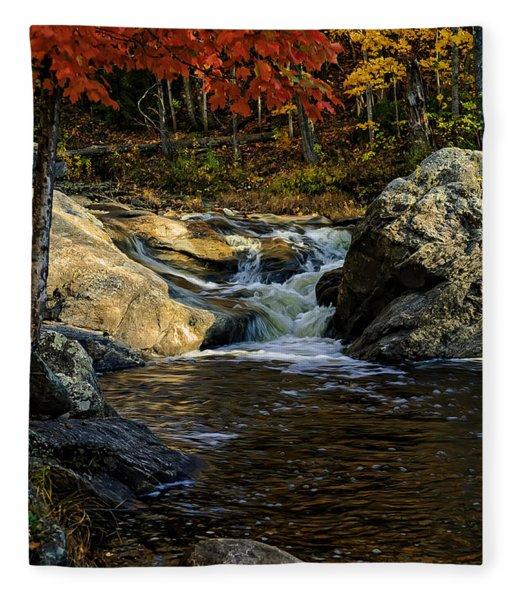 Stream In Autumn No.17 Fleece Blanket