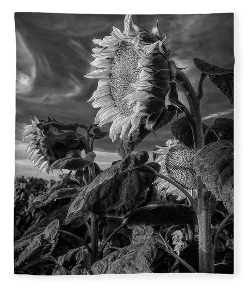 Strength Of A Sunflower Fleece Blanket