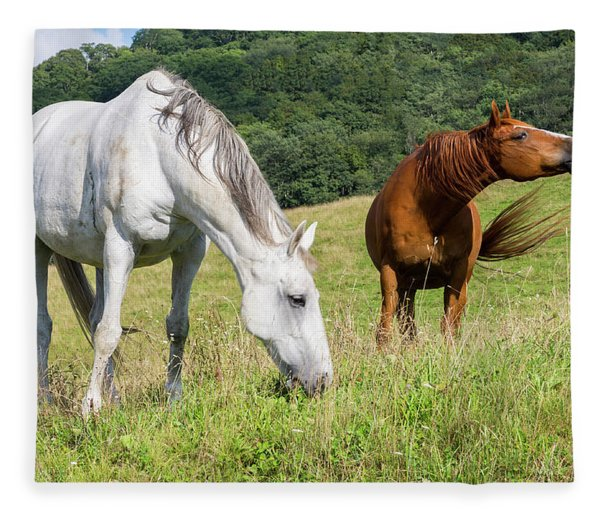 Summer Evening For Horses Fleece Blanket