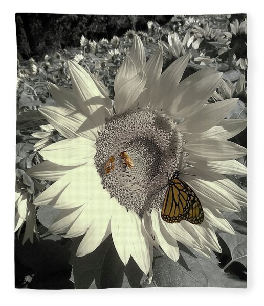 Sunflower Tint Fleece Blanket