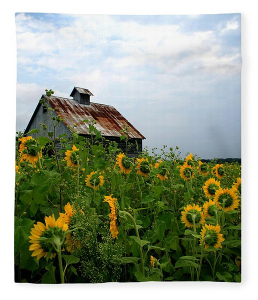 Sunflowers Rt 6 Fleece Blanket