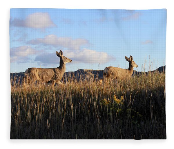 Sunlit Deer  Fleece Blanket