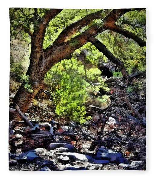 Sunlit Desert Canyon Tree Fleece Blanket