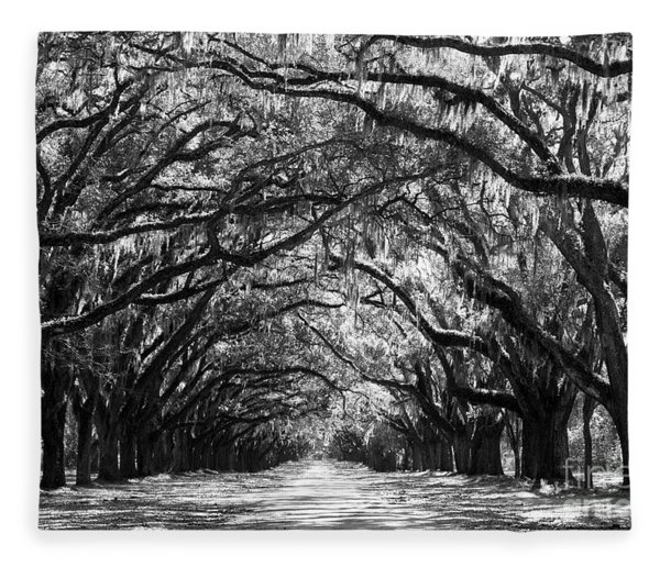 Sunny Southern Day - Black And White Fleece Blanket