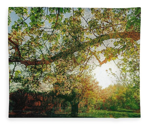 Fleece Blanket featuring the photograph Sunset  by Bee-Bee Deigner