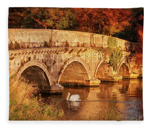 Fleece Blanket featuring the photograph Swan On The Rye Water - Kildare, Ireland by Barry O Carroll