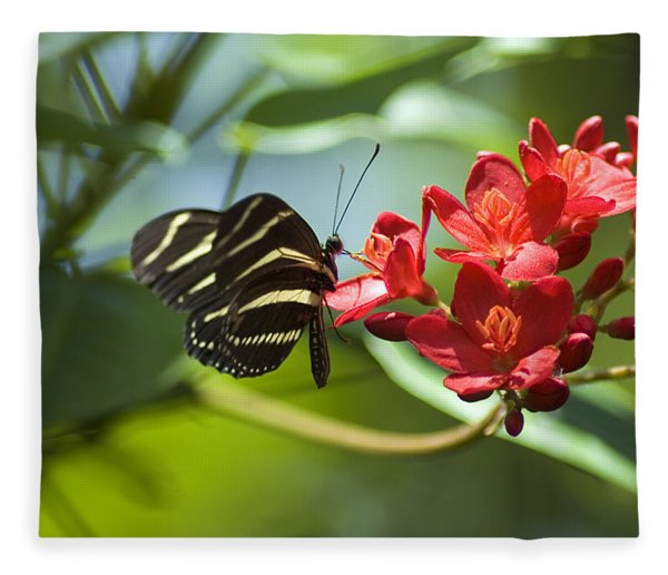 Fleece Blanket featuring the photograph Sweet Nectar by Carolyn Marshall