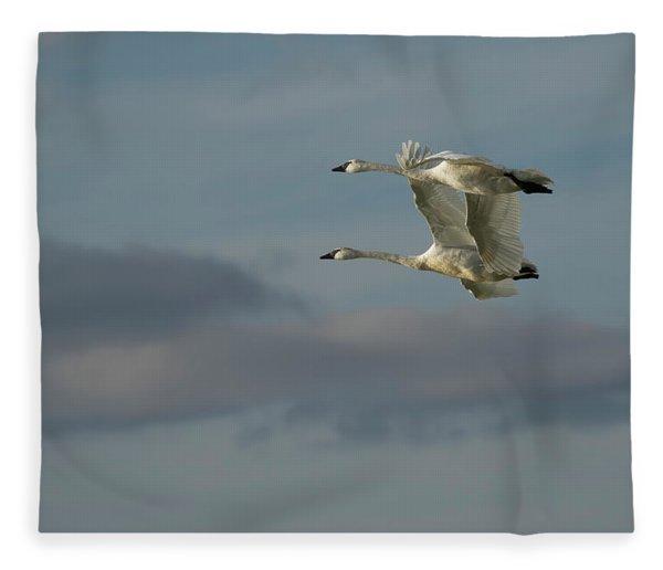 Synchronicity  Fleece Blanket