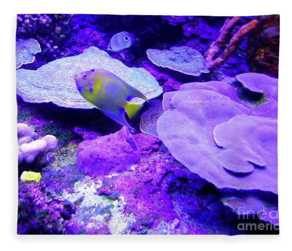 Ta Purple Coral And Fish Fleece Blanket