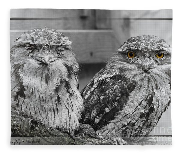 Tawney Frogmouths Fleece Blanket