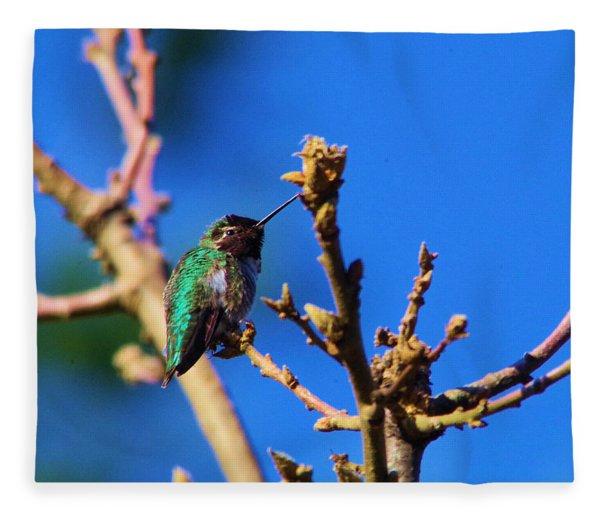 The First Hummingbird Fleece Blanket