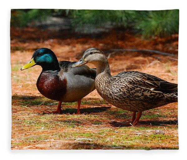 The Honeymooners - Mallard Ducks  Fleece Blanket