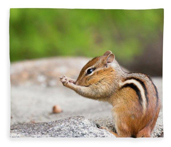 The Praying Chipmunk Fleece Blanket