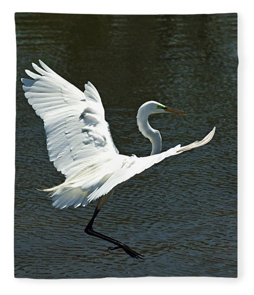 Fleece Blanket featuring the photograph Time To Land by Carolyn Marshall