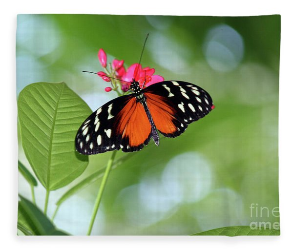 Tropical Hecale Butterfly Fleece Blanket
