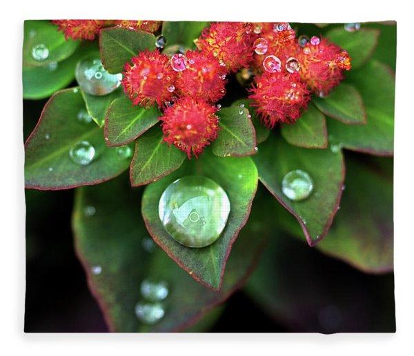 Water Drops On Christmas Flower Fleece Blanket