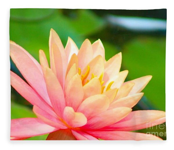 Floating Water Lily  Fleece Blanket