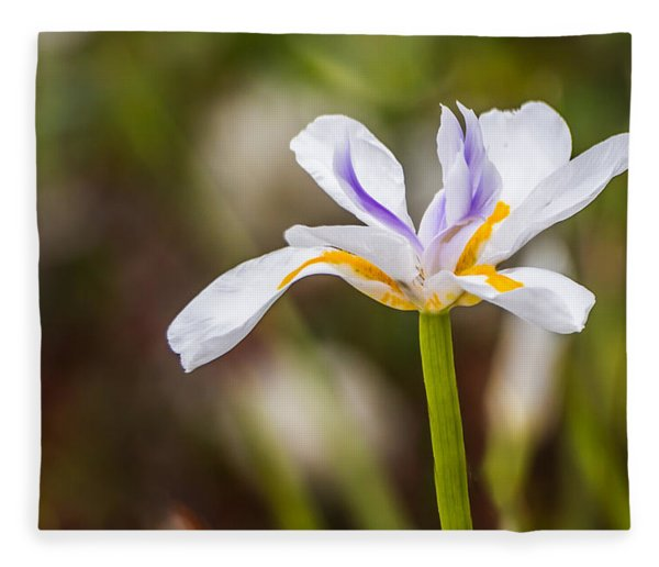 White Beardless Iris Fleece Blanket