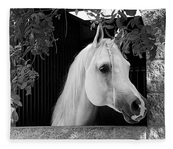 White Beauty - Series #5 Fleece Blanket