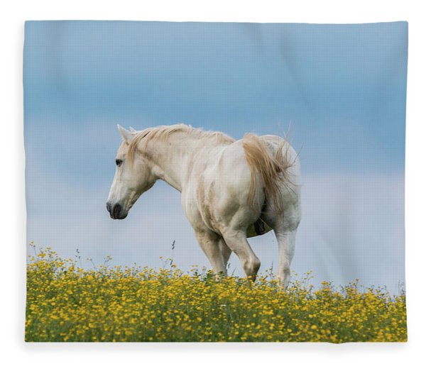 White Horse Of Cataloochee Ranch - May 30 2017 Fleece Blanket