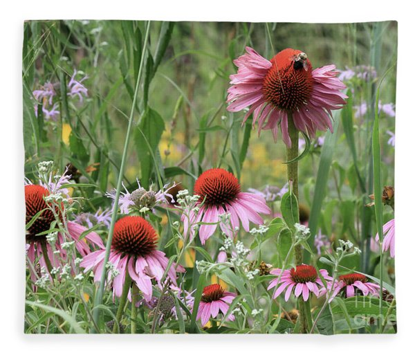 Wild Coneflowers Fleece Blanket