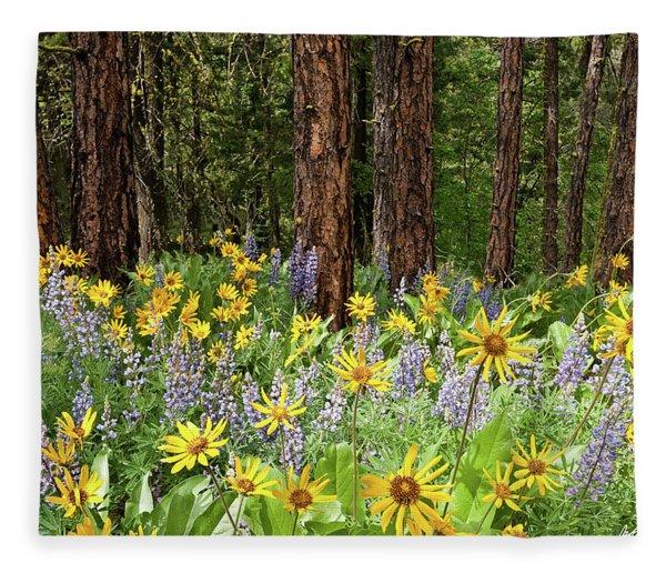 Balsamroot And Lupine In A Ponderosa Pine Forest Fleece Blanket