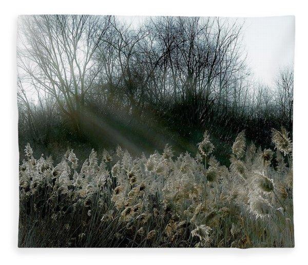 Winter Fringe Fleece Blanket