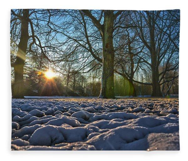 Winter In The Park Fleece Blanket
