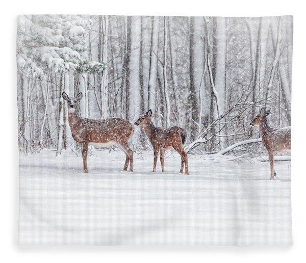 Winter Visits Fleece Blanket