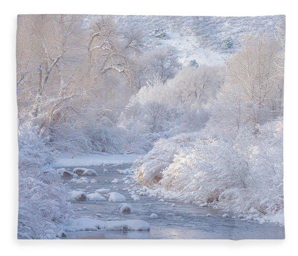 Winter Wonderland - Colorado Fleece Blanket