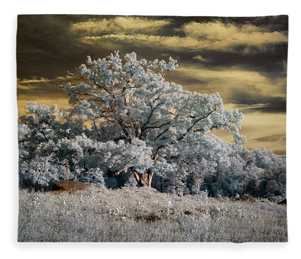 Witness To History Fleece Blanket