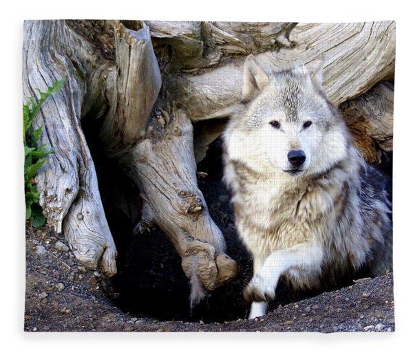 Wolf Den 1 Fleece Blanket