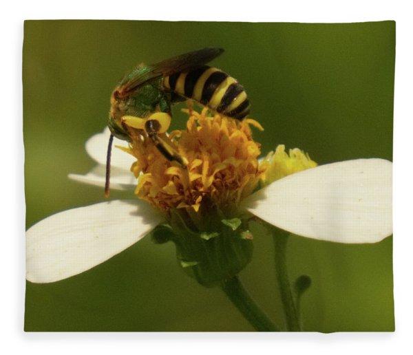 Yellow And Black Bee On Flower. Fleece Blanket