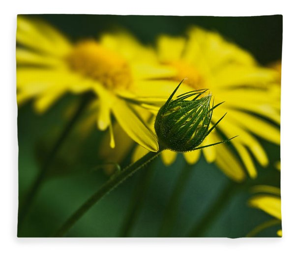 Yellow Daisy Bud Fleece Blanket