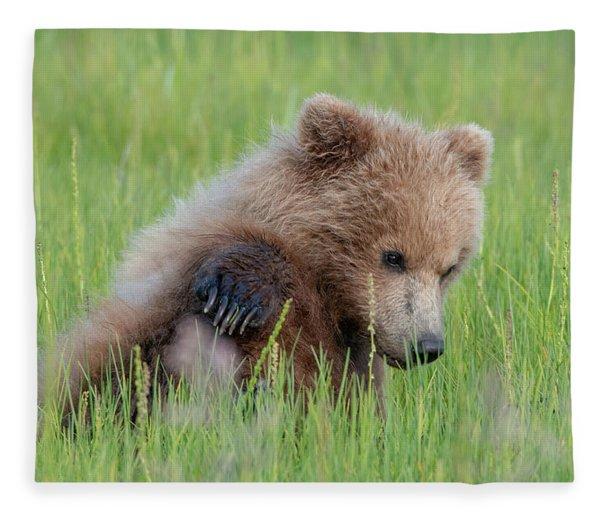 A Coy Cub Fleece Blanket