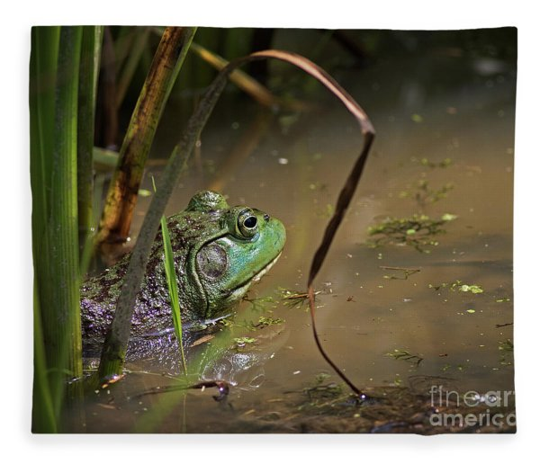A Frog Waits Fleece Blanket