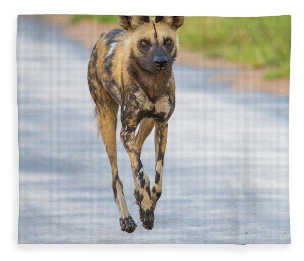 African Wild Dog Bouncing Fleece Blanket