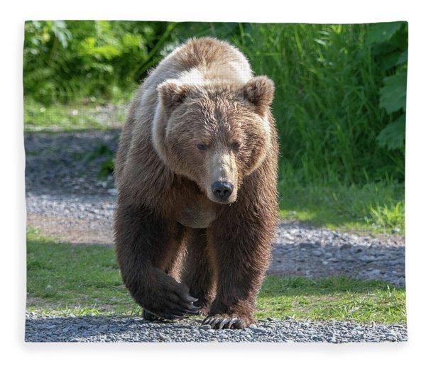 Alaskan Brown Bear Walking Towards You Fleece Blanket