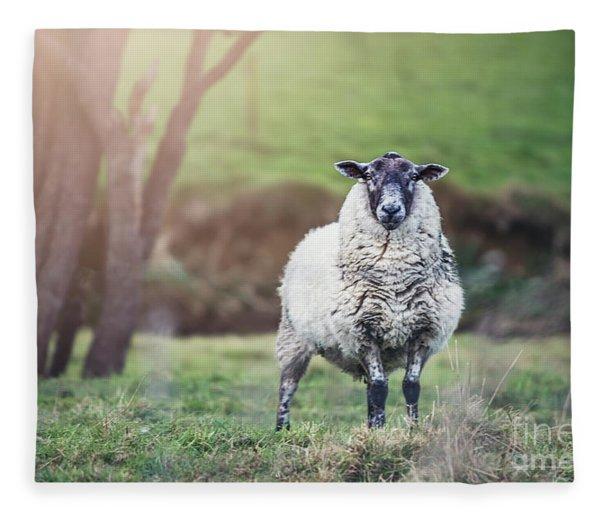 Amazing Graze Fleece Blanket