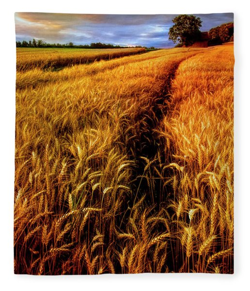 Amber Waves Of Grain Painting  Fleece Blanket