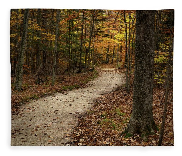 Autumn Trail Fleece Blanket