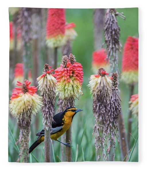 B58 Fleece Blanket
