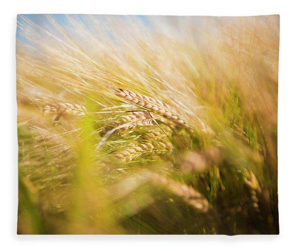 Background Of Ears Of Wheat In A Sunny Field. Fleece Blanket