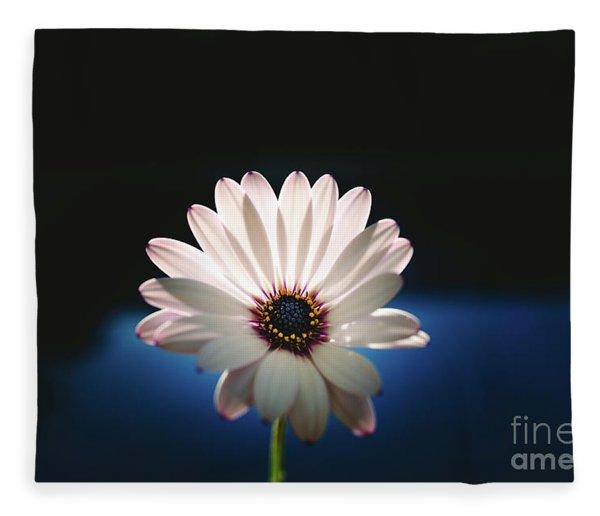 Beautiful And Delicate White Female Flower Dark Background Illum Fleece Blanket