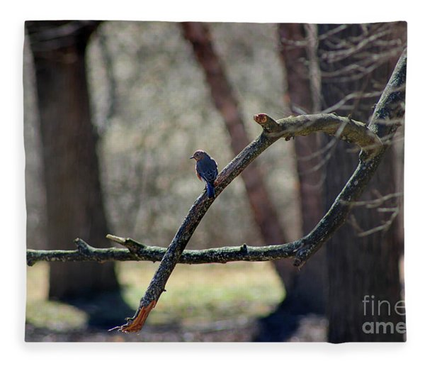 Bluebird, Bluebird, Sing To Me Fleece Blanket