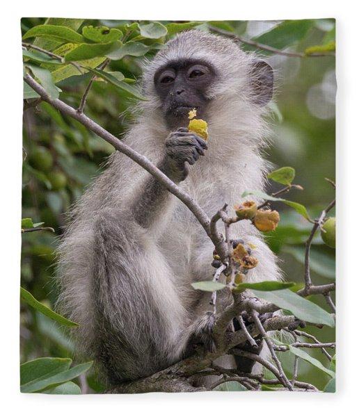 Breakfasting Monkey Fleece Blanket