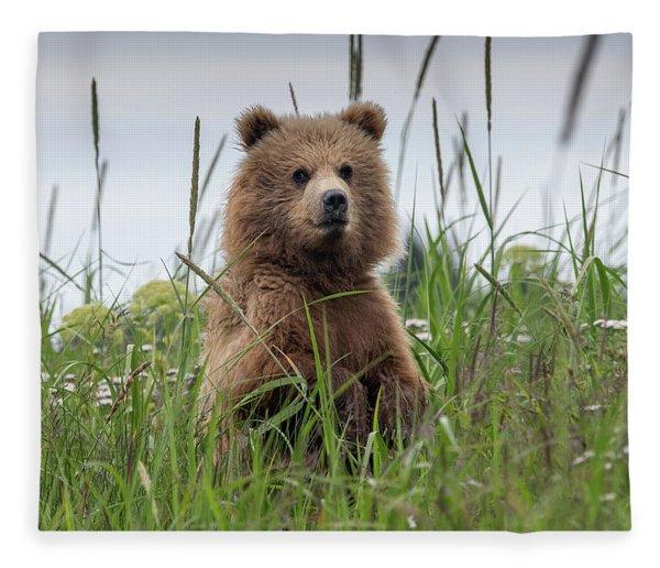 Brown Bear Cub In A Meadow Fleece Blanket