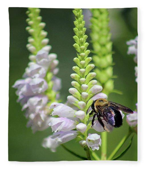 Bumblebee On Obedient Flower Fleece Blanket