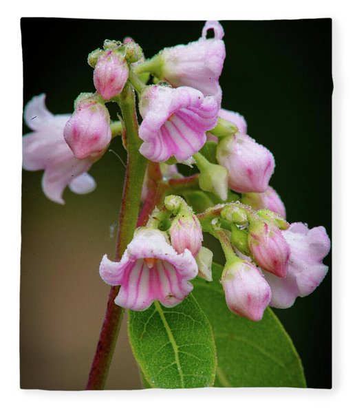 Bunch Of Dogbane Fleece Blanket